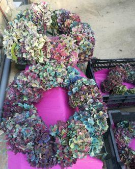 Couronnes d'hortensias semi-séchées
